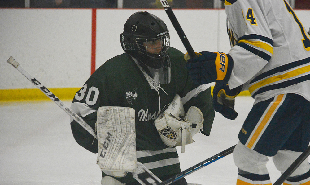 2018-2019 Boys Hockey Players to Watch